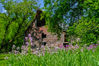 River bottom barn with wildflowers